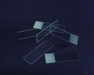 Gelatin Coated Adhesive Microscope Slides