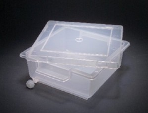 Gel Staining Tray