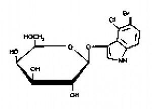 X-gal (Biochemical Reagents)